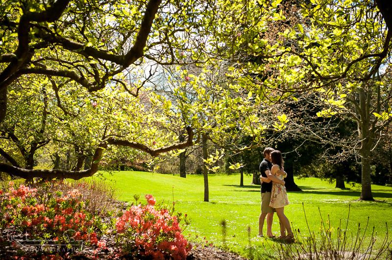 The christchurch botanic gardens nz sight guide for Landscape gardeners christchurch